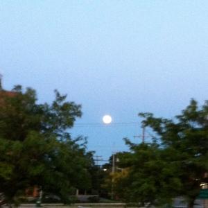 Super moon mania