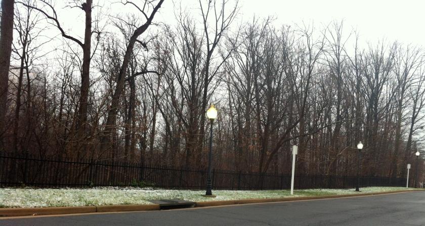 Gray day in Alexandria, VA