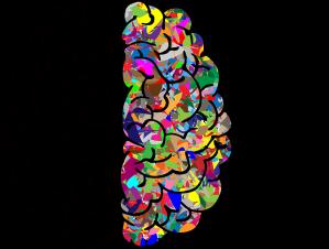 brain-2750415_640
